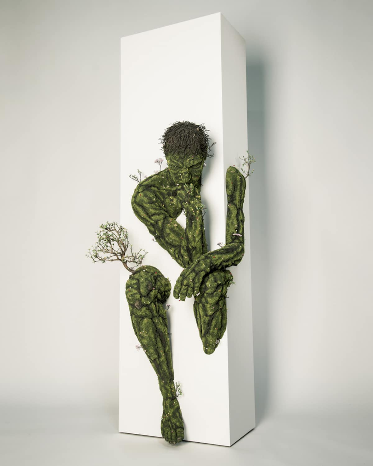 Plant Artwork by Emeric Chantier