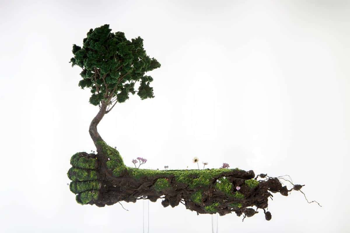 Plant Sculptures by Emeric Chantier