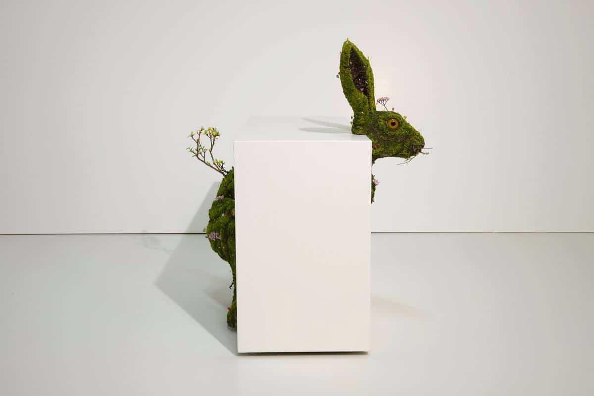 Arte con plantas