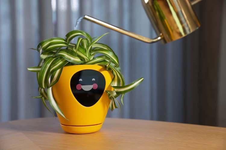 Smart Flower Pot