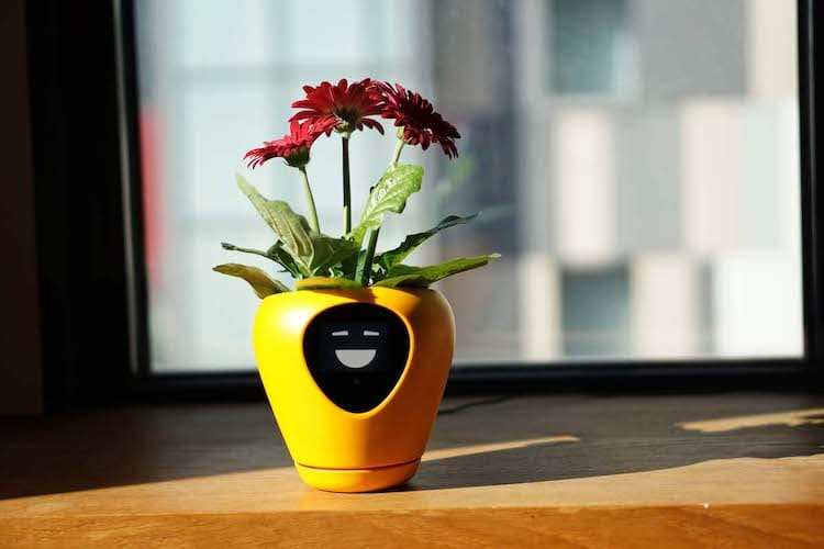 Smart Planter by Mu Design