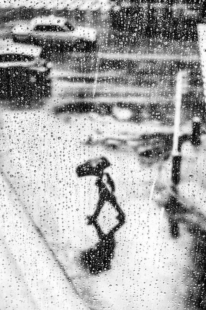 Walking in the Rain with an Umbrella by Alan Schaller