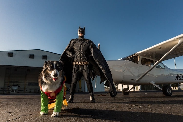 Batman4Paws Animal Rescue