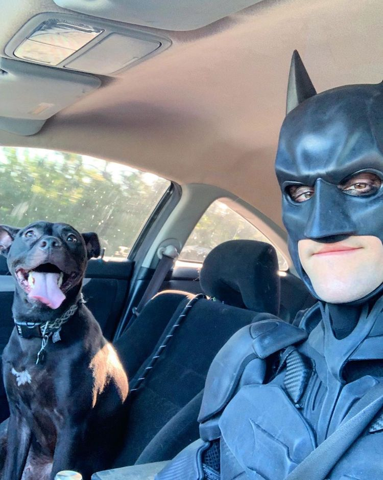 Batman4Paws rescate de animales