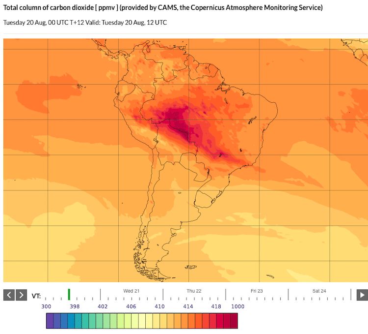 Satellite Information about the Brazilian Amazon Fires