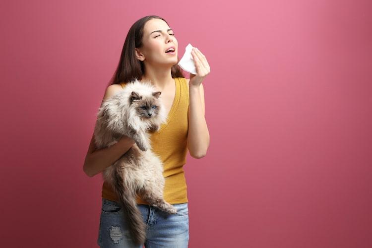 alergia a los gatos vacuna