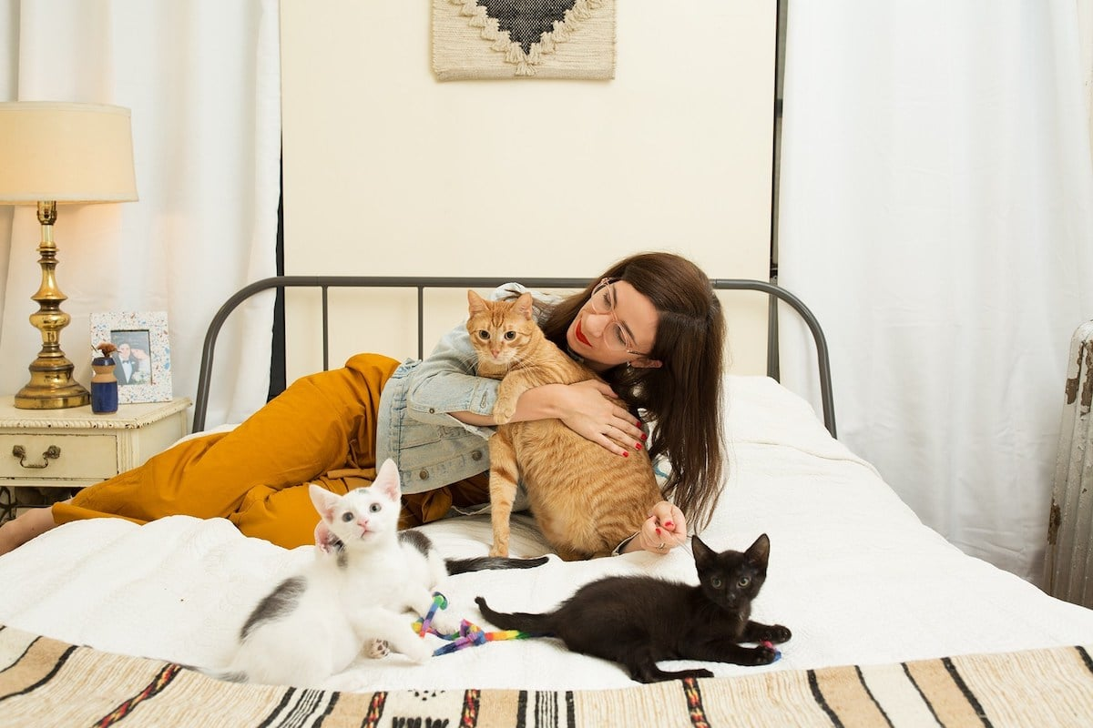 Women and Cats Photo