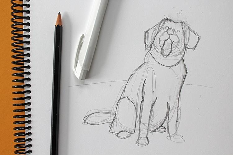 tutorial para dibujar un perro