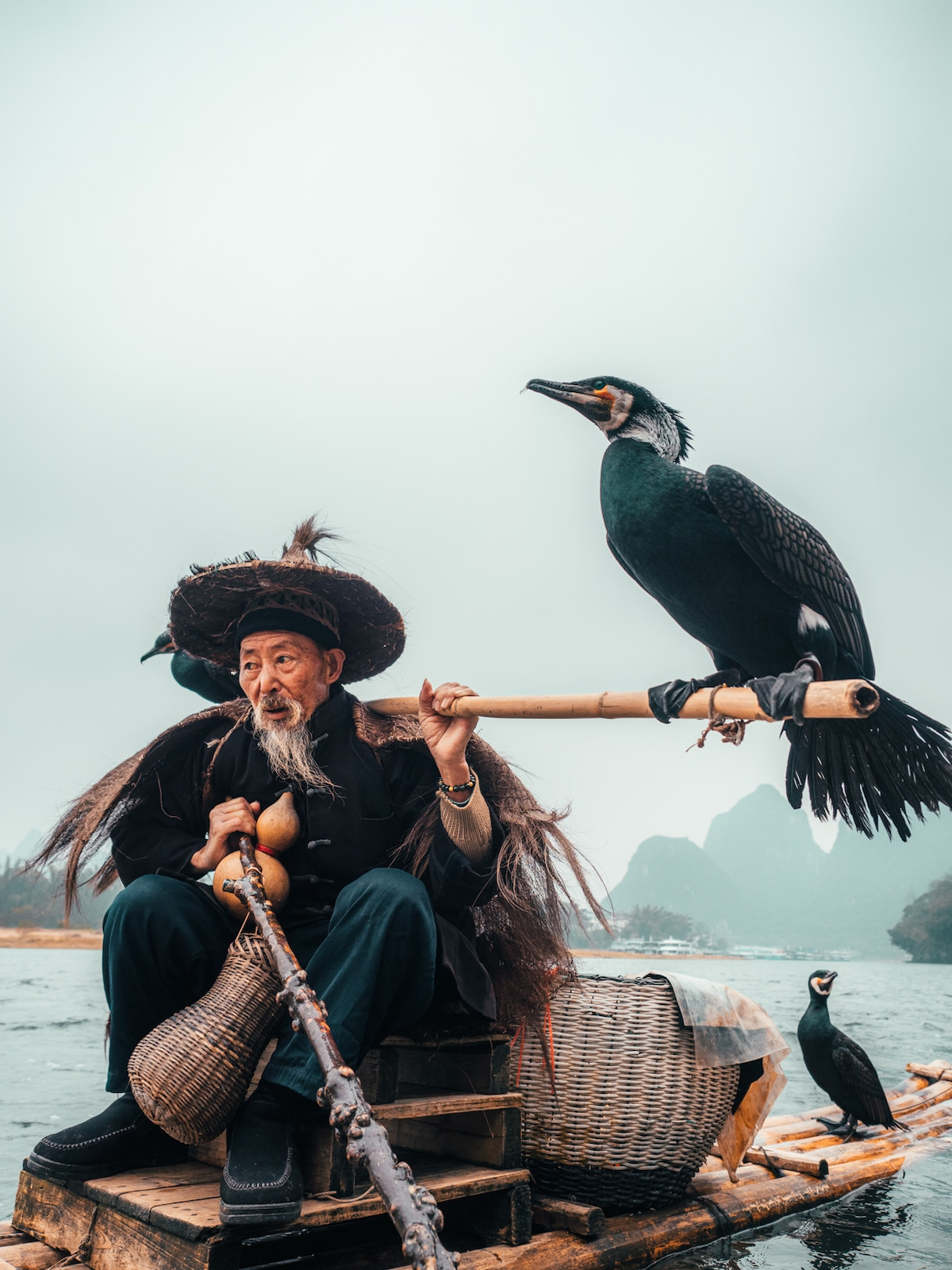 Traditional Cormorant Fishing in Yangshuo, China