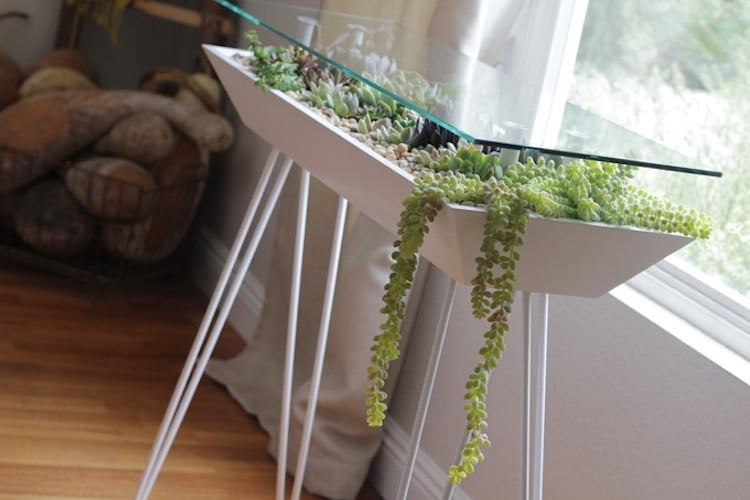 This Elegant Table Also Functions As A Beautiful Succulent