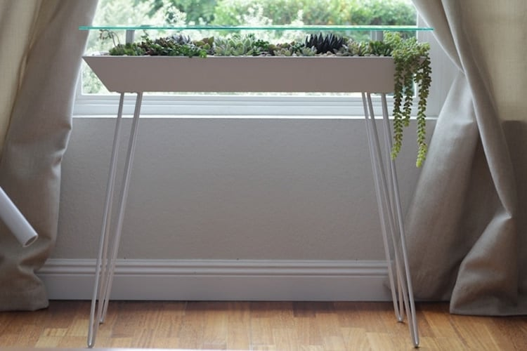 Succulent Garden Table by Bloomingtables
