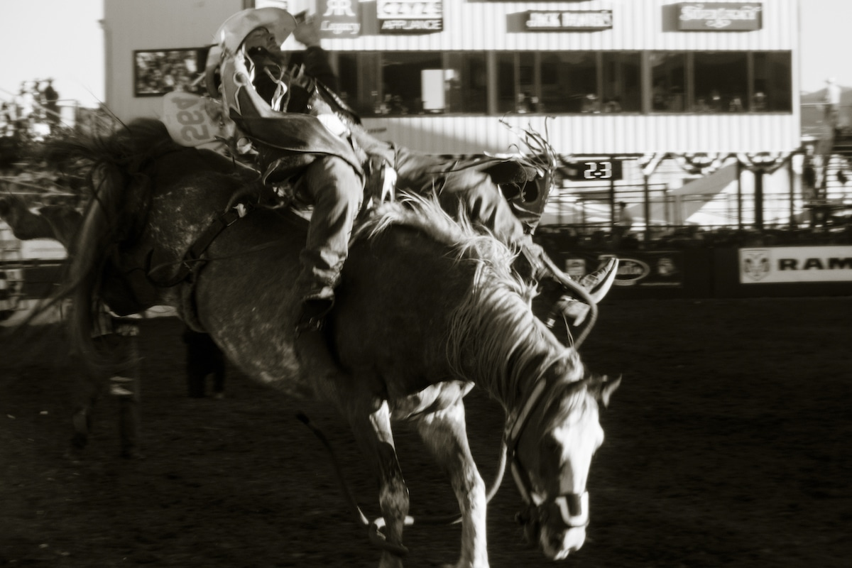 Reno Rodeo Photography