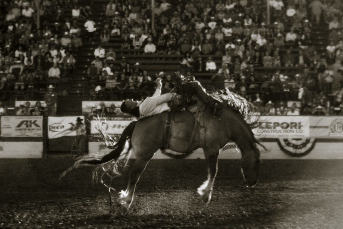 Action at the Reno Rodeo