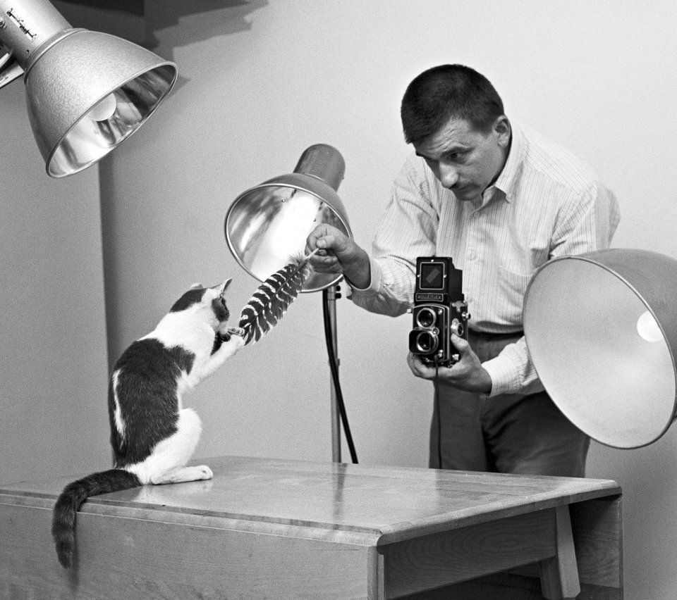 Walter Chandoha Cats Photography Book by Taschen