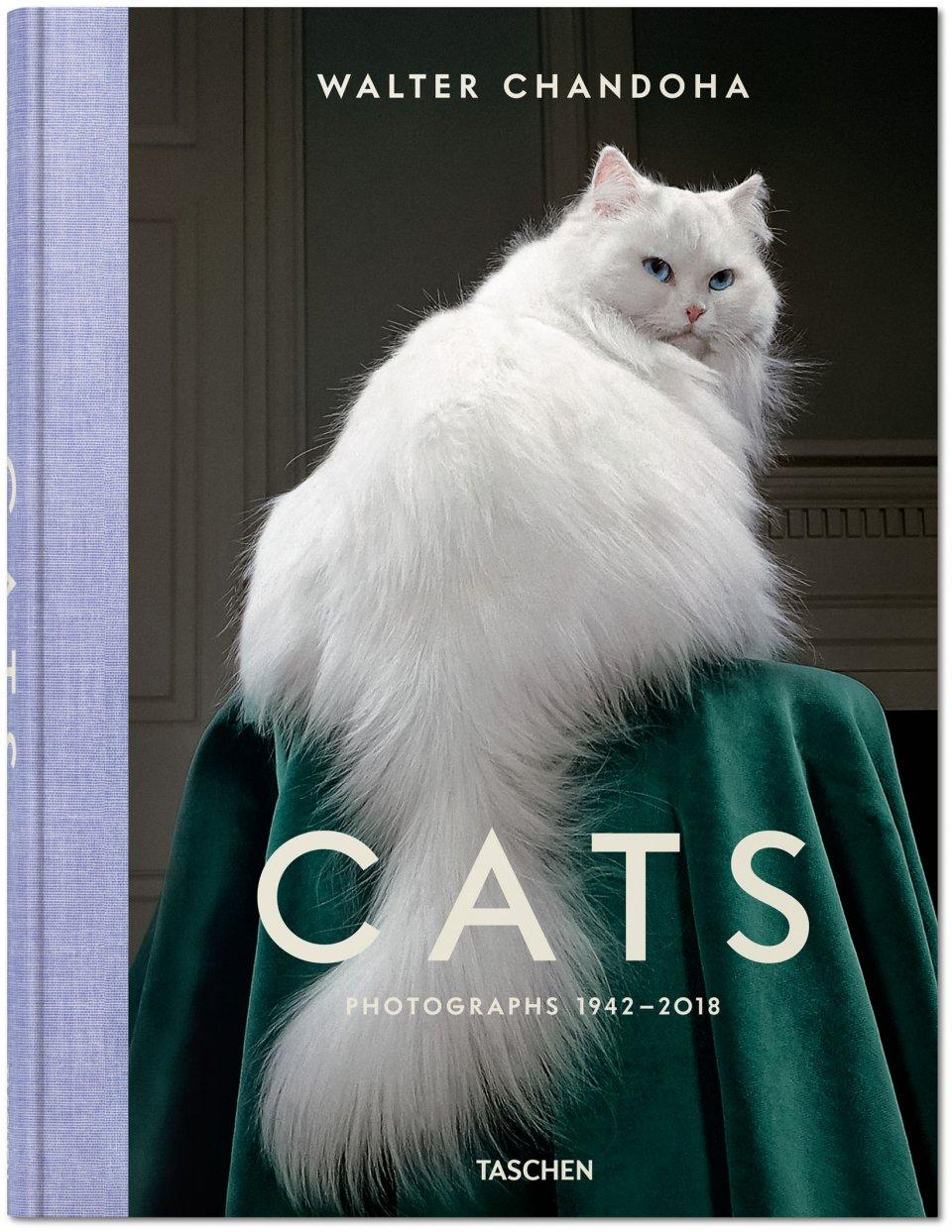 Walter Chandoha Cats - libro de fotos de gatos por Taschen