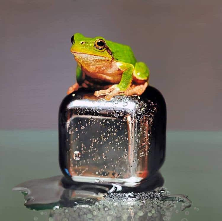 Pintura hiperrealista de una rana