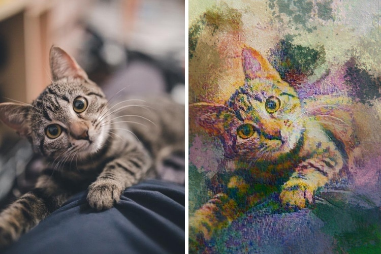 Online Pet Paintings Using AI