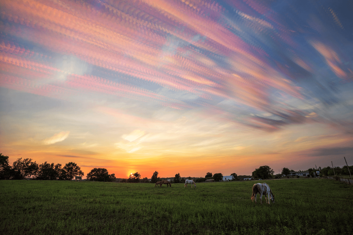 Time-Lapse Photography by Matt Molloy