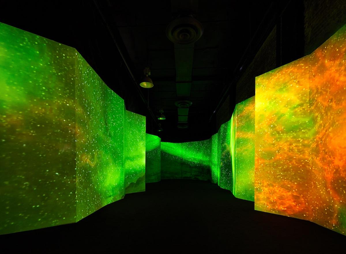 Immersive Art Installation in New York