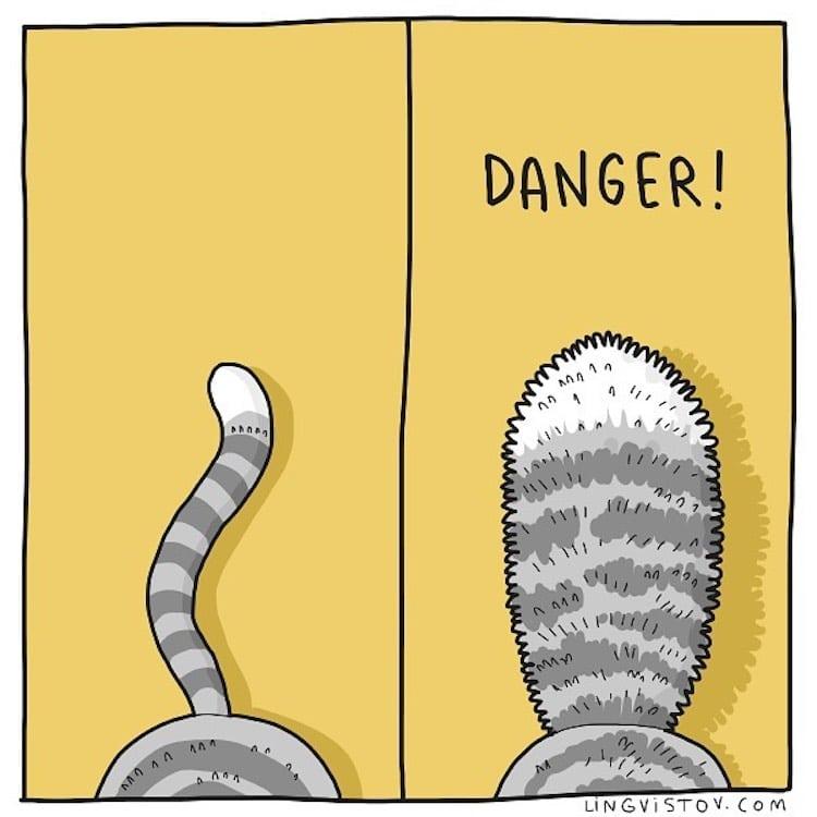 Cat Comics by Lingvistov
