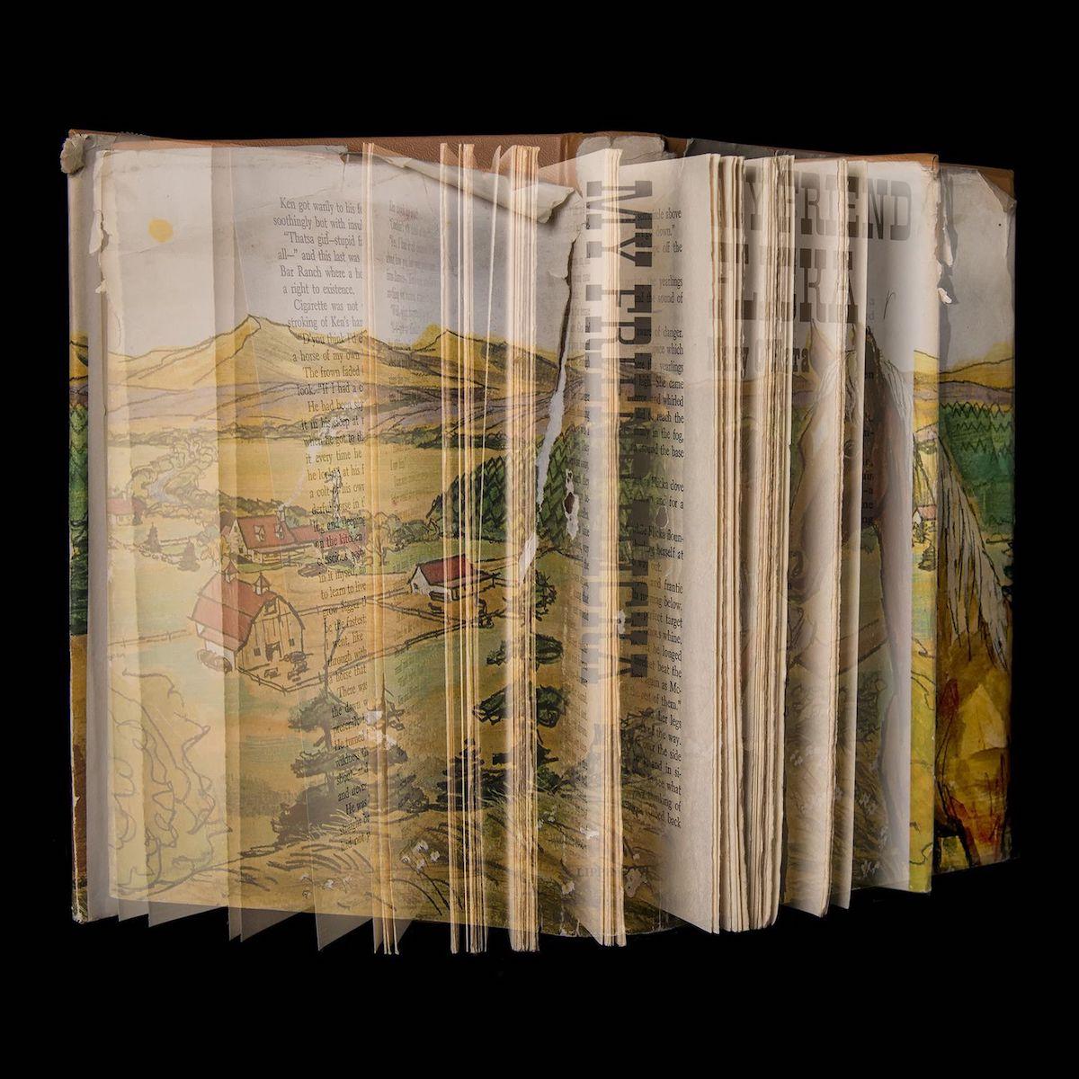Fotos de libros para niños de Ellen Cantor