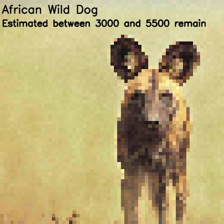 Endangered Species Pixelated Photos by JJSmooth44