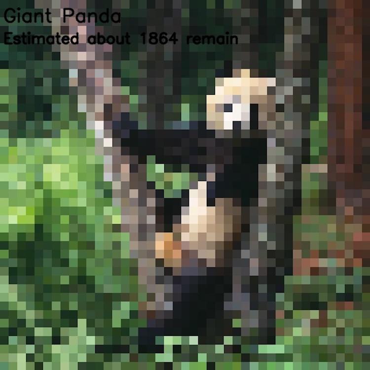animales en peligro de extinción imágenes pixeleadas
