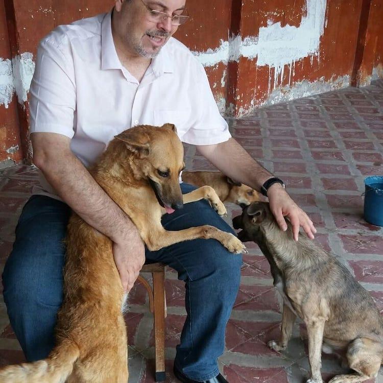 historia padre perros callejeros brasil
