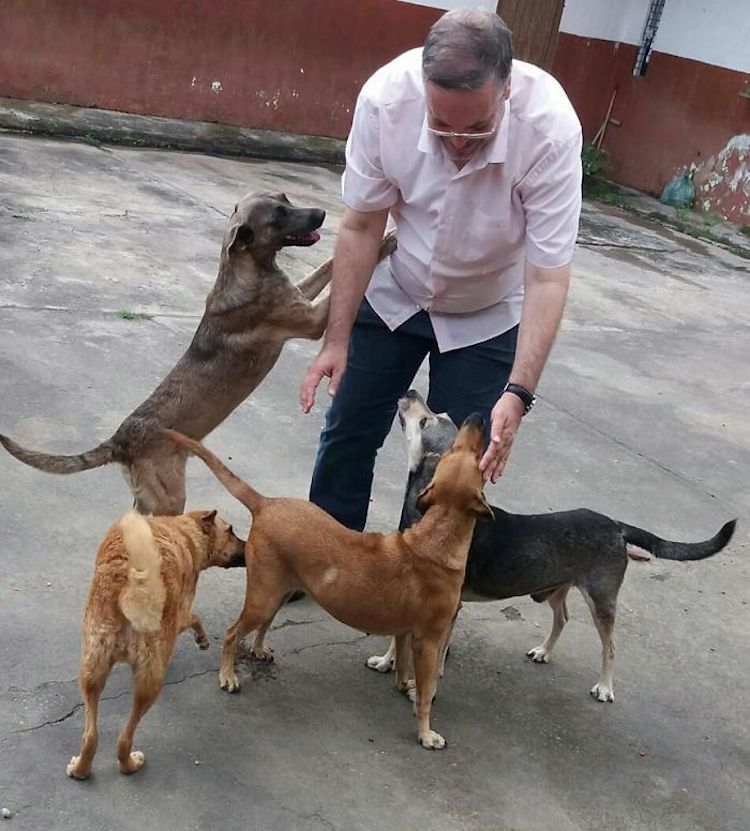 Priest Brings Stray Dogs to Church