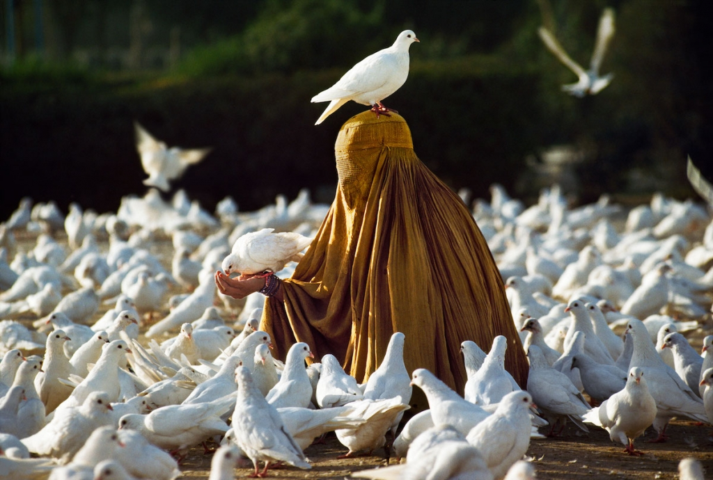 Woman feeding doves near Blue Mosque in Afghanistan by Steve McCurry