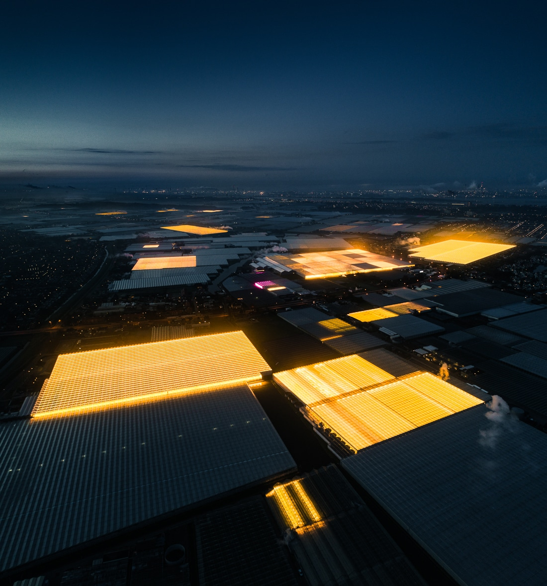 LED Greenhouses in Holland by Tom Hegen