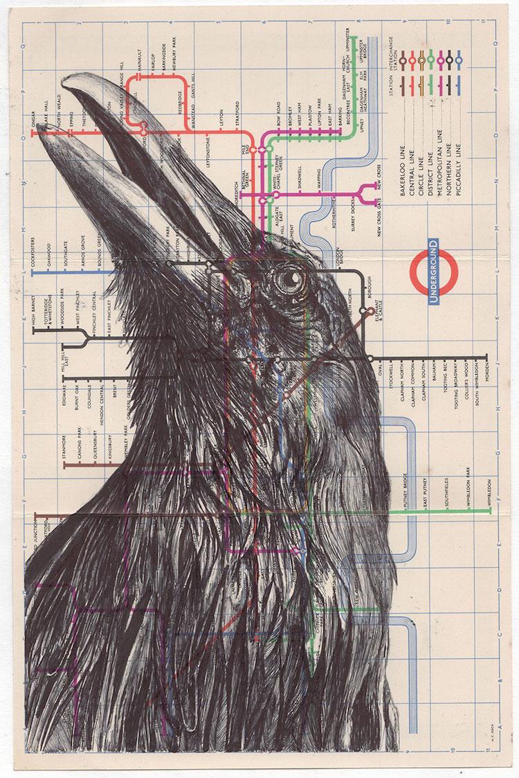 Dibujos a pluma
