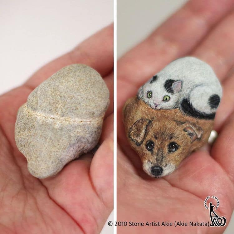 Animal Rock Paintings by Akie Nakata
