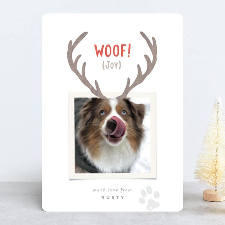 Clever Christmas Card for Dogs