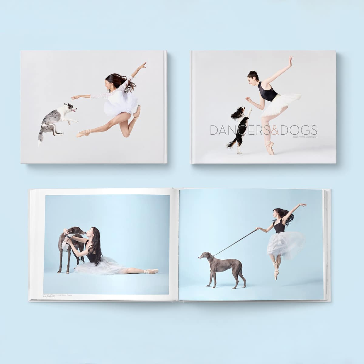 Dancers and Dogs Book