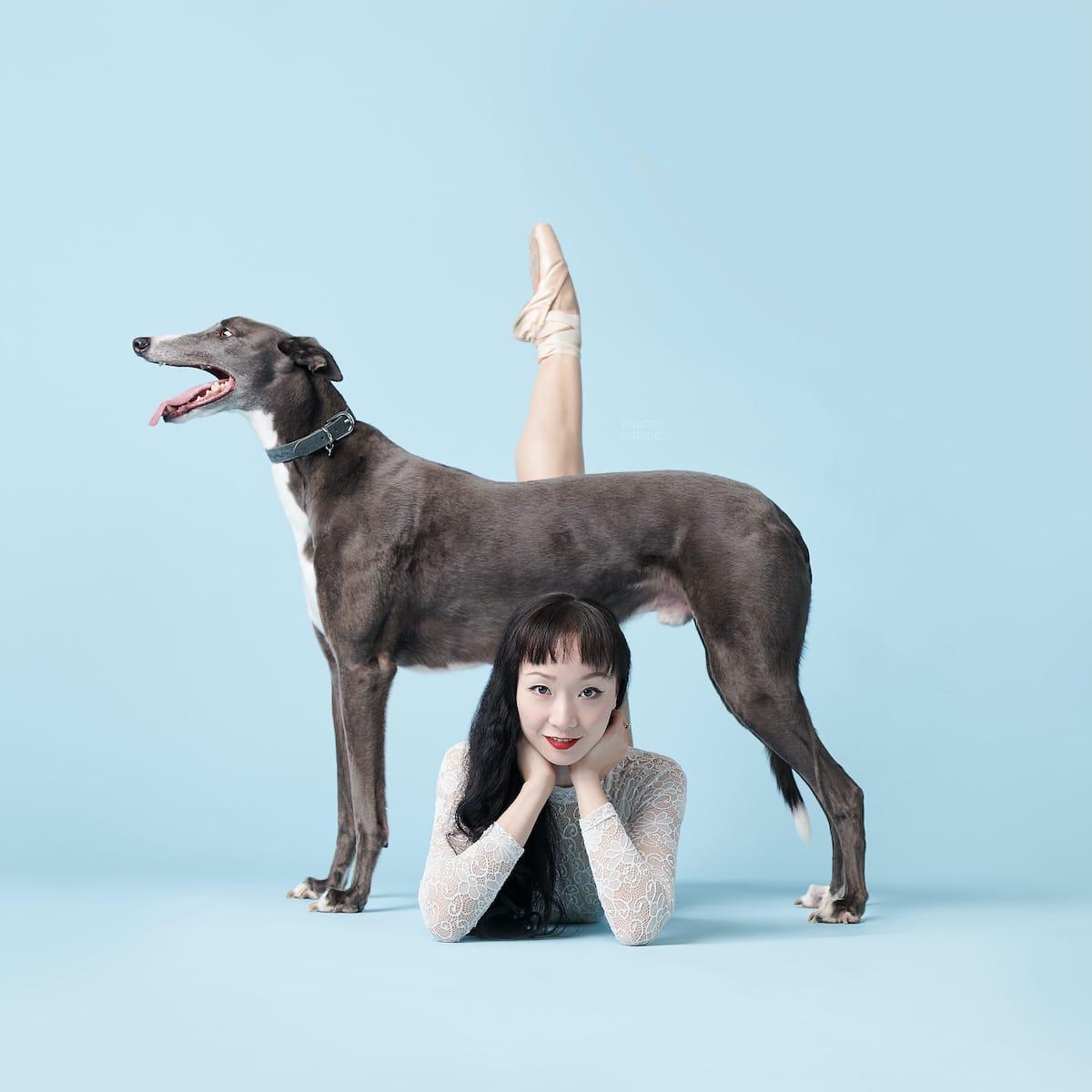 Fotos originales de perros