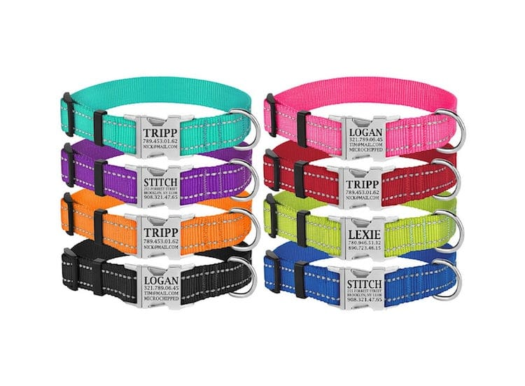 Reflective Tagless Dog Collar
