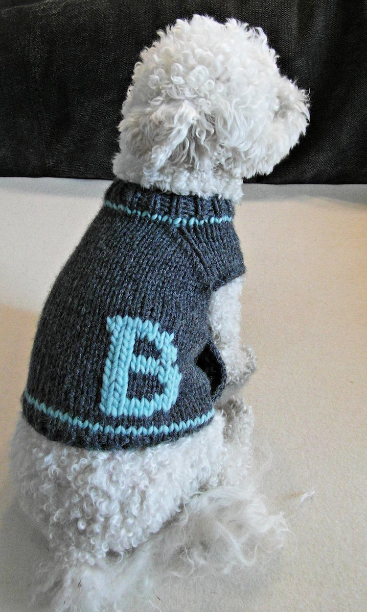 Personalized Dog Sweater