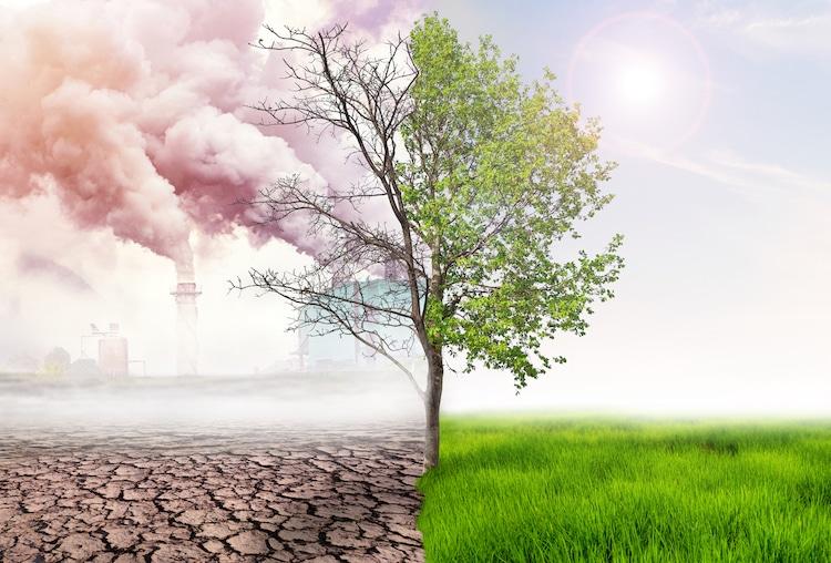 cambio climático educación
