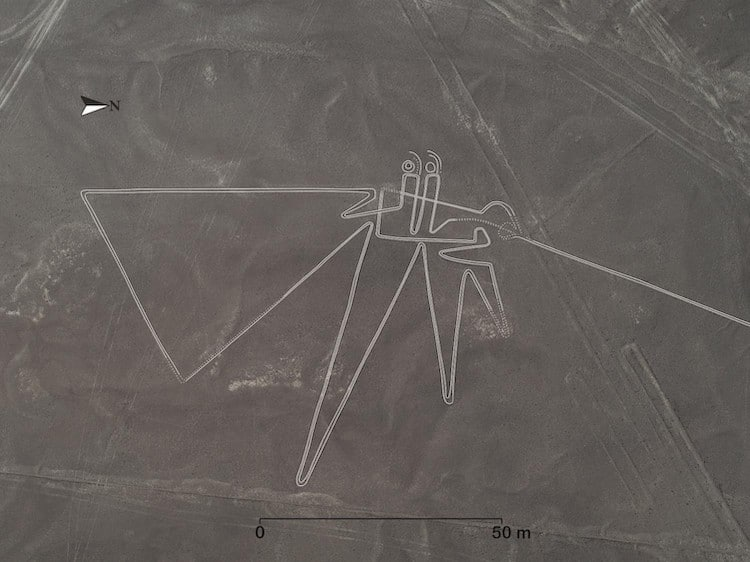 Geoglyph in the Shape of a Bird at Nazca Lines
