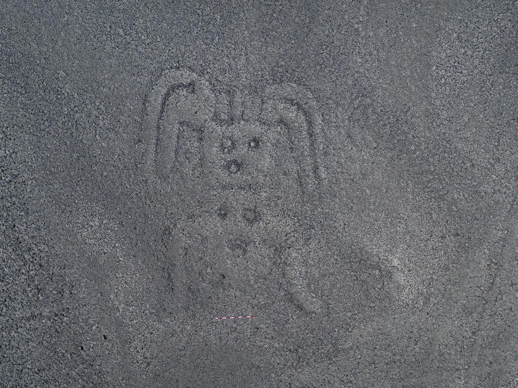 Nazca Lines Geoglyph