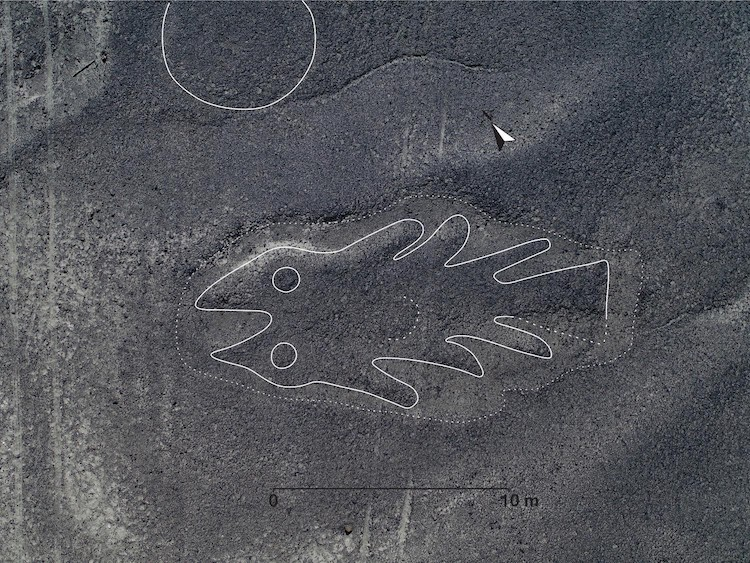 Geoglyph in the Shape of a Fish at Nazca Lines