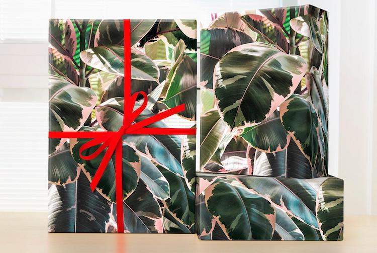 Plant Wrapping Paper