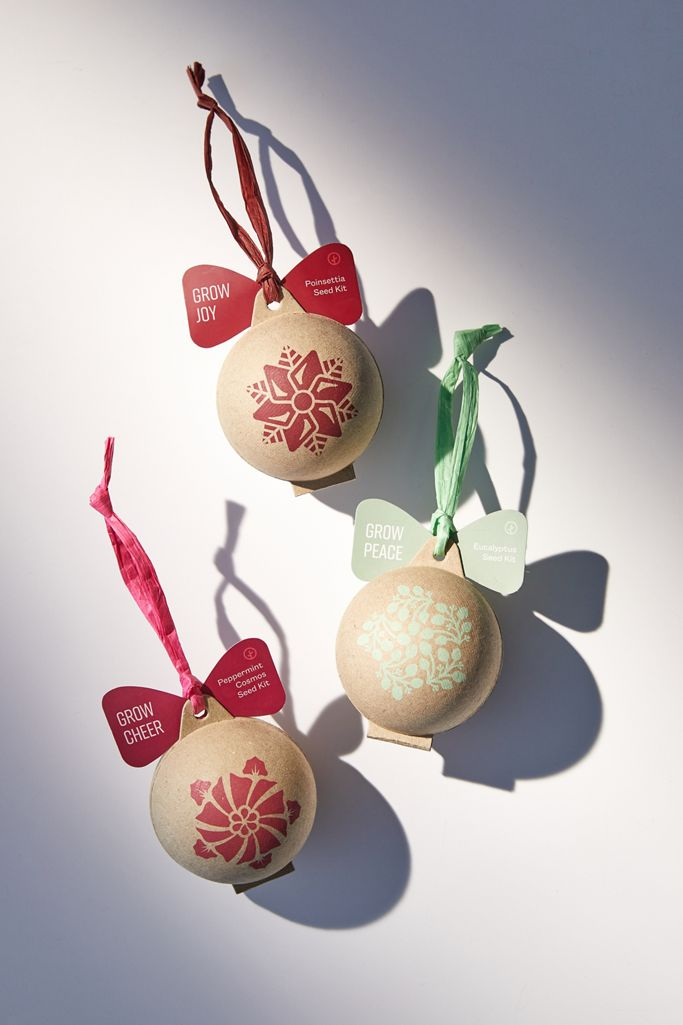 Seed Growing Christmas Ornament