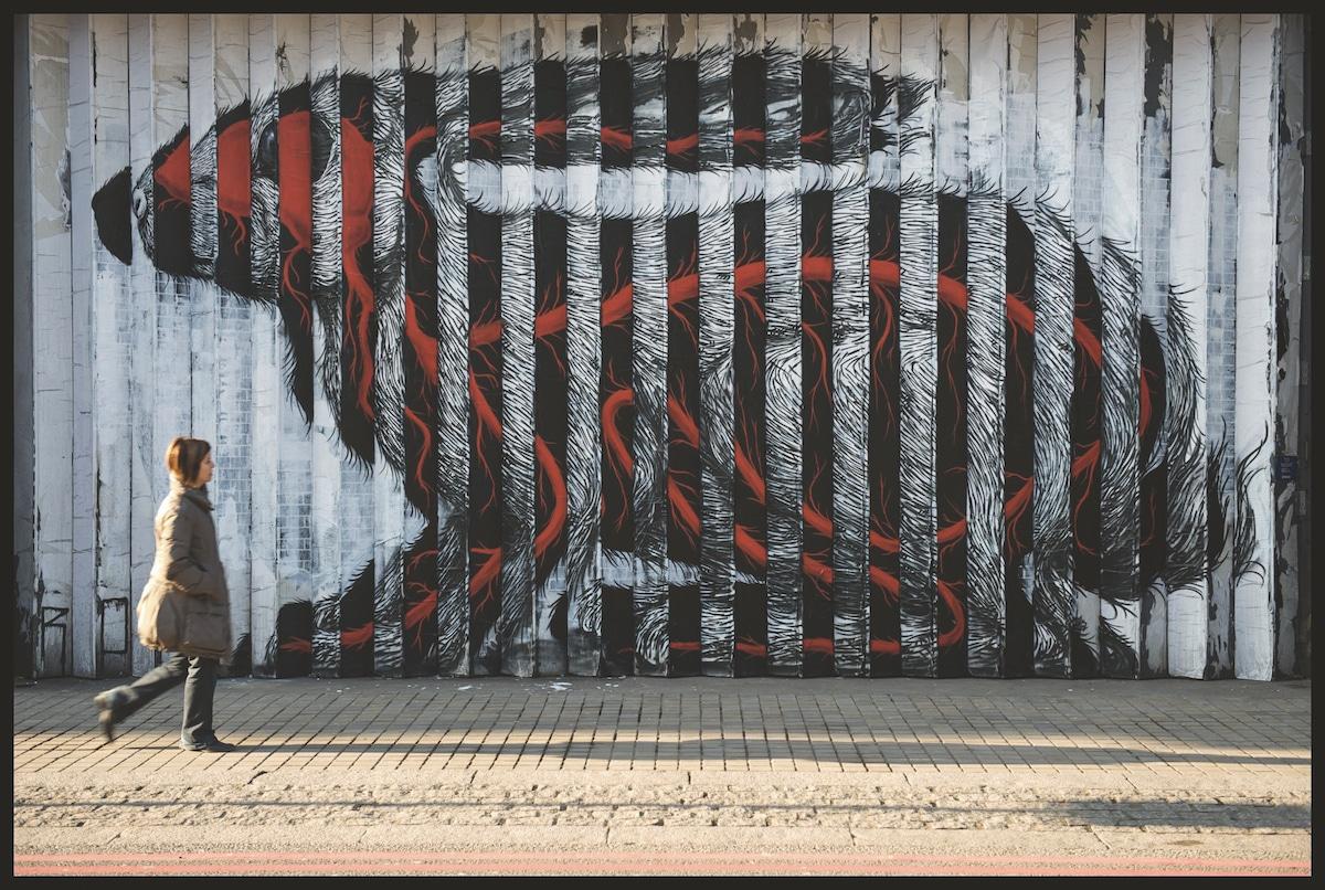 artista urbano roa
