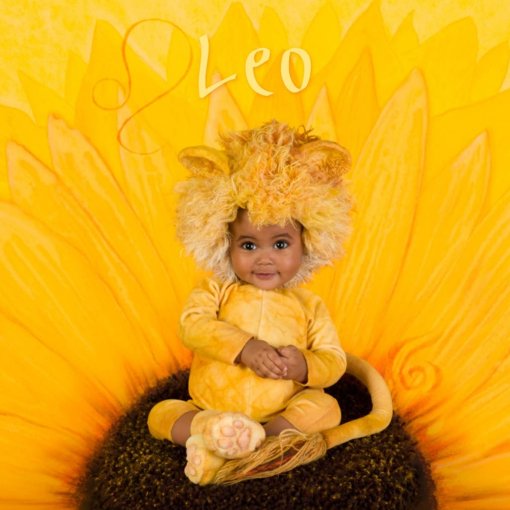 Leo Zodiac Sign Photo by Anne Geddes