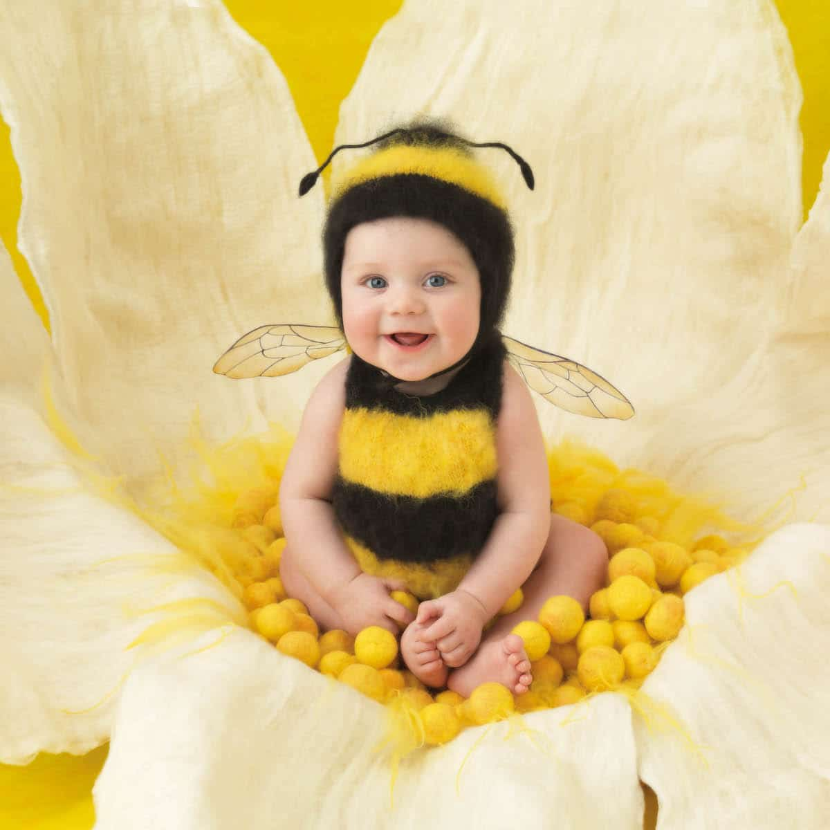 Bumble Bee Newborn by Anne Geddes