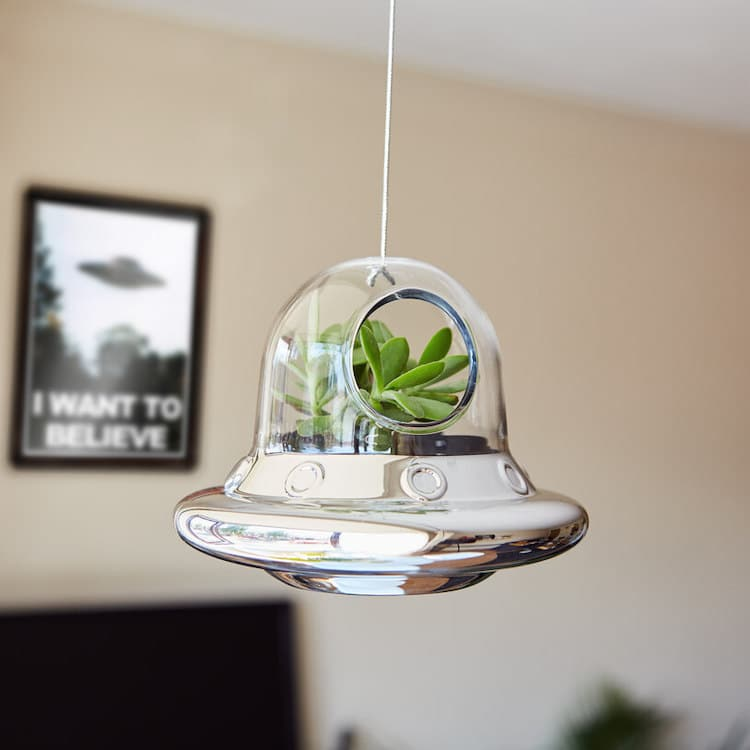 Flying Saucer Planter
