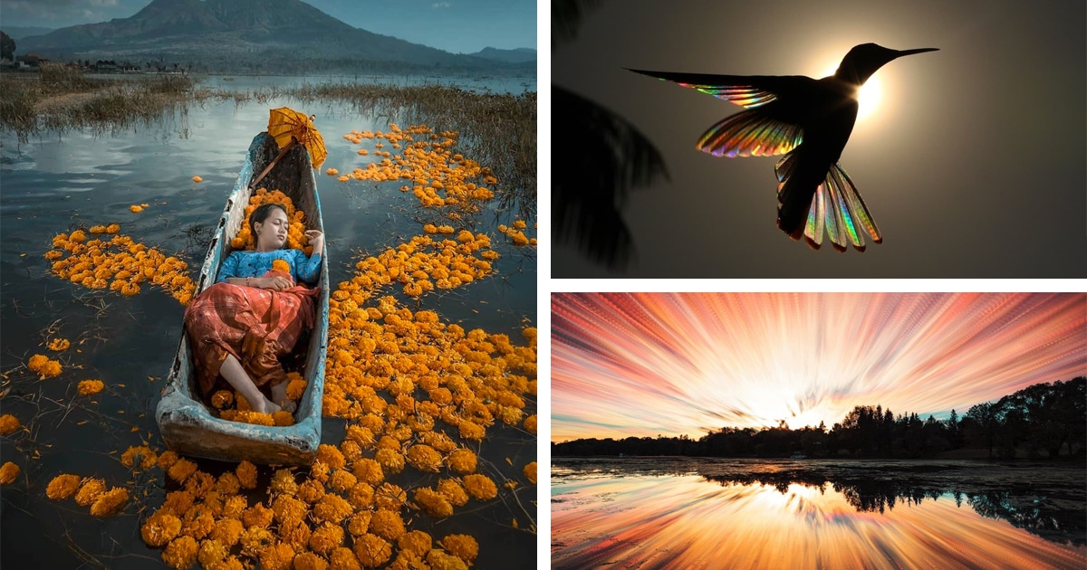 Best Of 2019: Top 50 Photographs From Around The World