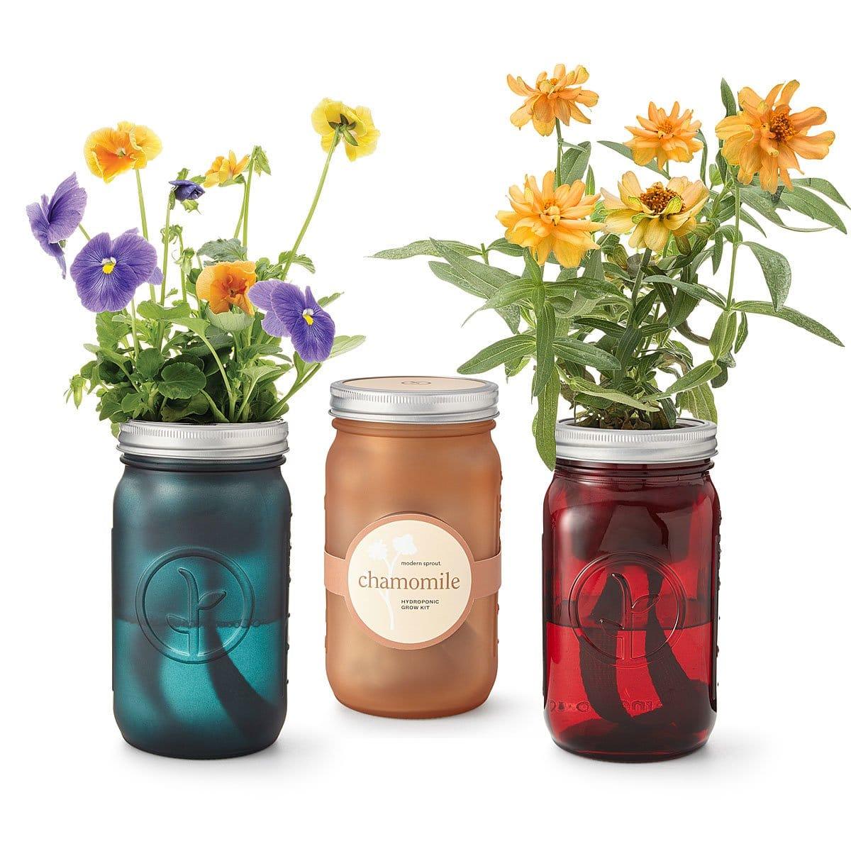 Indoor Flower Garden for Teacher Appreciation